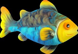 سكرابز أسماك